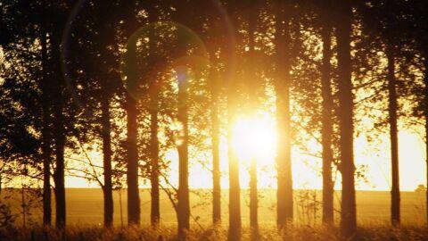 Primeira quinzena de agosto será marcada por calor e tempo seco