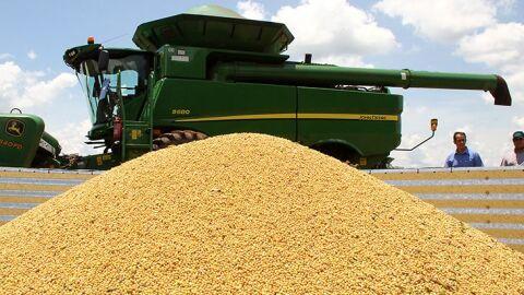 Exportações de Mato Grosso do Sul sobem 16,5% com destaque para soja, celulose e açúcar