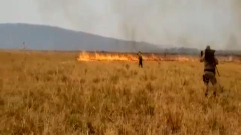 """Vídeo: """"Quase controlado"""", fogo se revolta, forma redemoinho e avança contra Bombeiros"""
