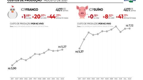 Produção: carne de frango e porco já está mais cara no bolso