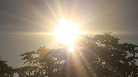 Calor atinge níveis de alerta em MS; veja como se cuidar