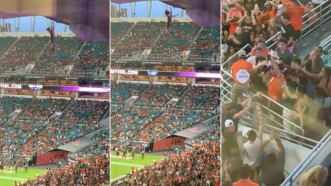 Vídeo: Durante jogo, gato cai de arquibancada de estádio e é salvo por torcedores