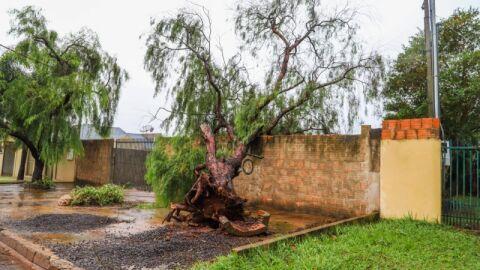 Maracaju: alerta para chuvas intensas e ventos de até 100Km/h