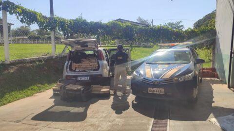PRF apreende 431,5 Kg de maconha em Ivinhema (MS)