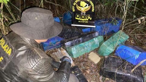 Homem acaba preso após esconder quase meia tonelada de maconha em mata