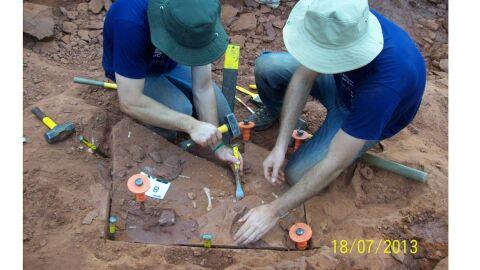Dados inéditos sobre dinossauro brasileiro revela semelhanças com jacarés