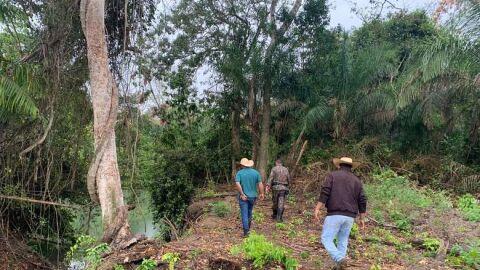 Fazendeiro leva multa de R$ 50 mil por degradação de área protegida