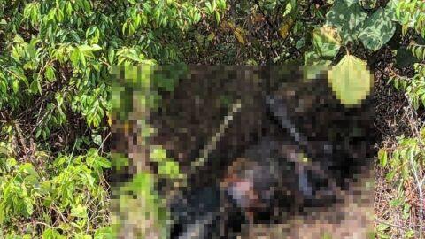 Corpo de homem é encontrado em decomposição no Distrito Industrial