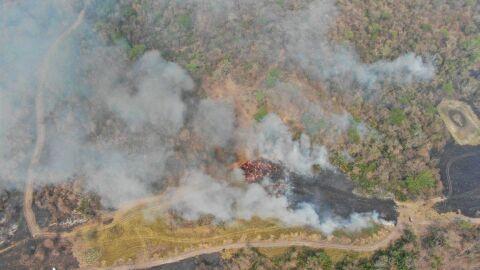 'Fogo subterrâneo' ou 'fogo de turfa' dificulta combate aos incêndios no Pantanal