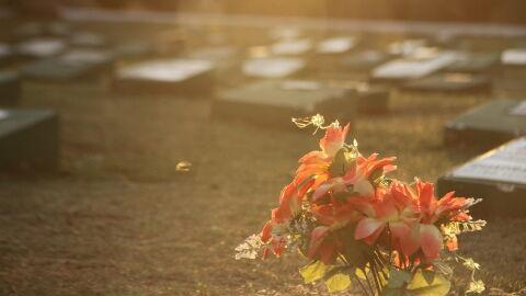 Morrem mais 17 pessoas pela Covid-19 em MS; somam 1.234 óbitos e mais 770 casos