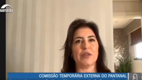 """Estamos indignados. Pantanal grita por socorro"", diz Simone Tebet"