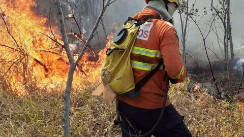 Vídeo: chamas atingem área de proteção onde fica a casa do vice-presidente