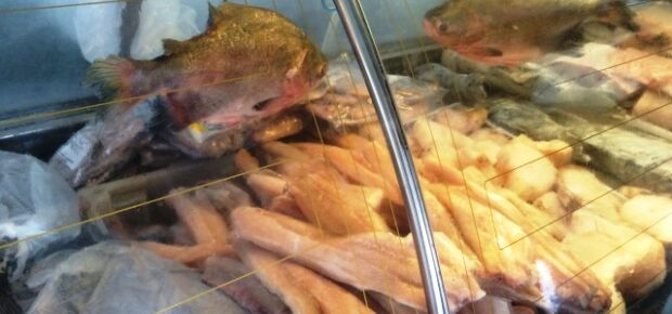 Segundo os cliente, preço do peixe almentou pelo menos em 30%/Foto: Leide Laura Meneses