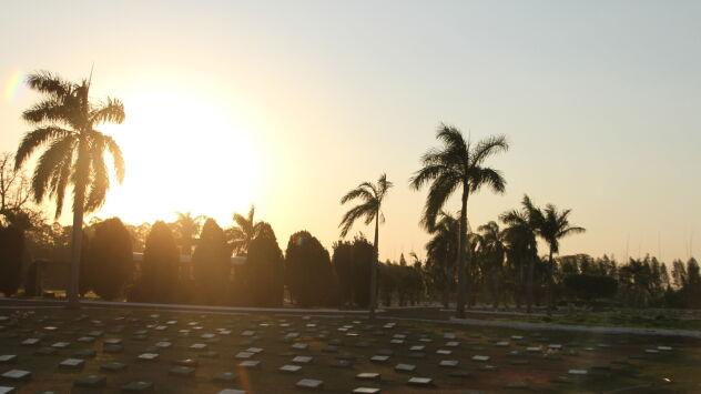 Brasil passa de 140 mil óbitos por Covid-19. Governo vai lançar o 'Dia D' do kit cloroquina