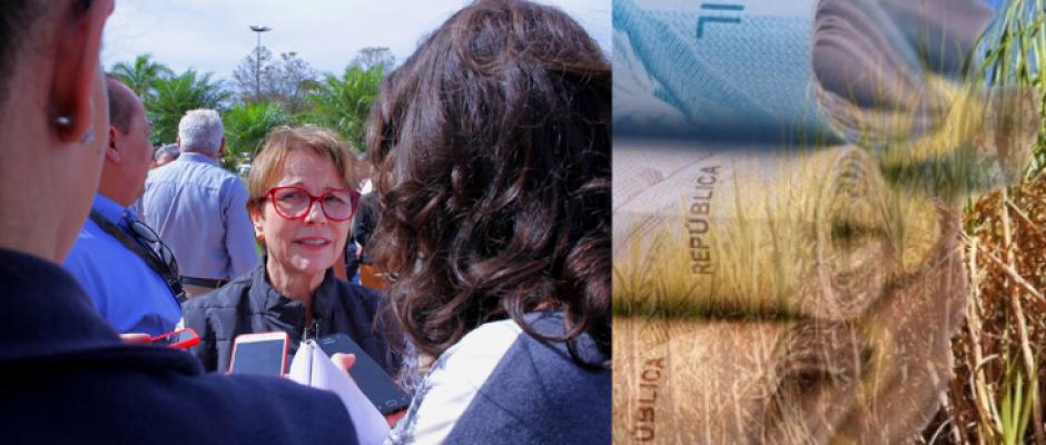 Usinas doaram R$ 2,3 milhões para campanha de Tereza, que liberou cana no Pantanal