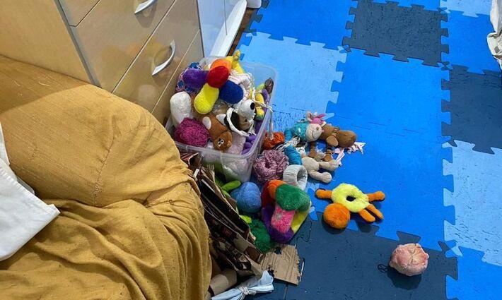 Operação Luz na Infância - do Ministério da Justiça no Brasil