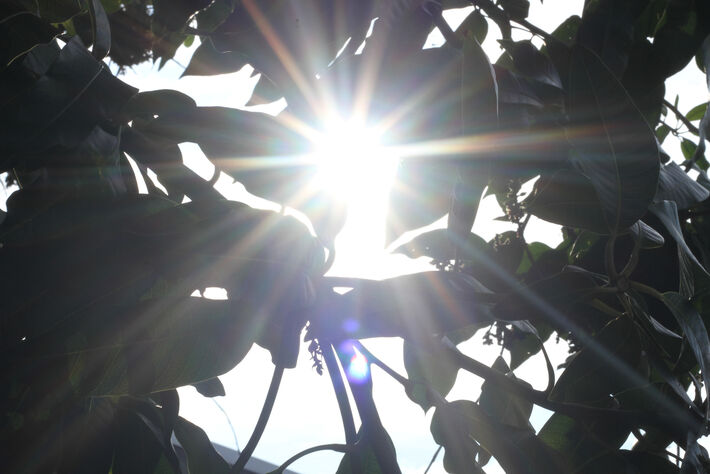 Sol quente nesta 6ª-feira em Campo Grande