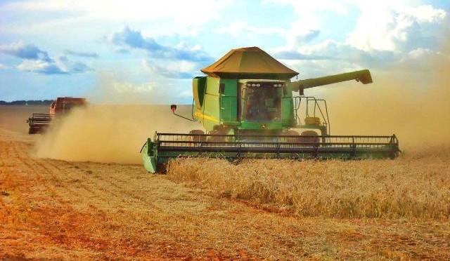 Mato Grosso do Sul é responsável por 8,7% da produção nacionalde cereais, leguminosas e oleaginosas
