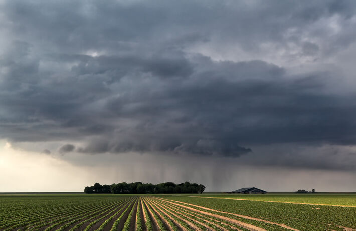 Chuvas em plantação