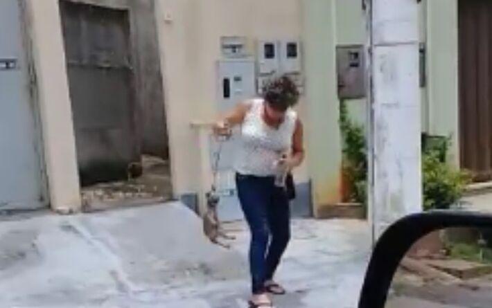 Mulher jogou filhote de cachorro várias vezes contra o chão, em Trindade