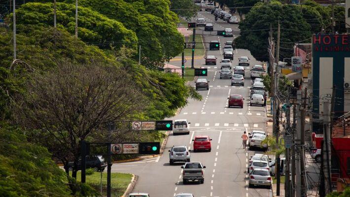 Capital aparece entre 123 cidades de 63 países, como líderes no planejamento e manejo de suas florestas urbanas