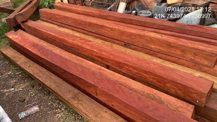 No local foram encontradas 50 árvores derrubadas que estavam sendo carregadas em caminhão, principalmente angico