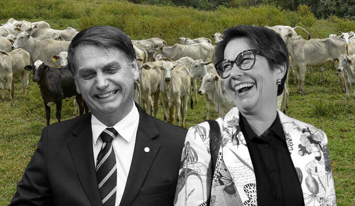 Minsitra e Bolsonaro.