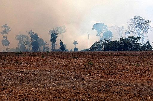 Além da falta de compromisso, pautas no Congresso e STF podem prejudicar situação ambiental no país