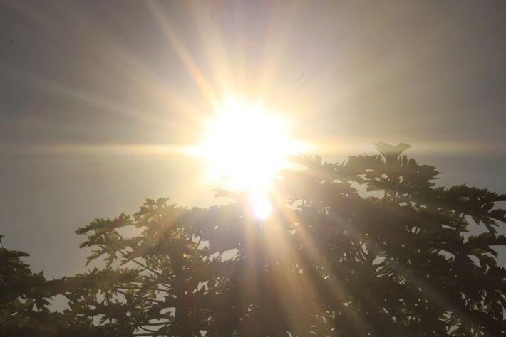 Sol intenso em Campo Grande (MS). Foto: Tero Queiroz