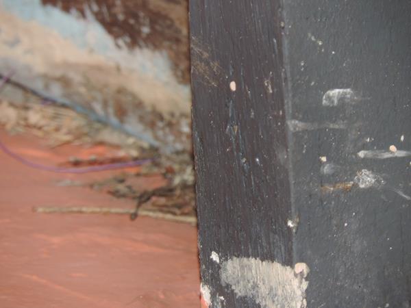 Foto da casa deteriorada por fezes de morcegos<br />Autor: Klemerson Rocha
