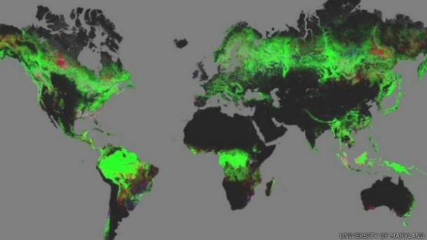 """</p> <p style=""""text-align: justify"""">Um novo mapa de alta resolução das florestas – online e interativo – foi criado com ajuda do site Google Earth. A ferramenta online está disponível gratuitamente na internet e permite uma aproximação detalhada de até 3"""