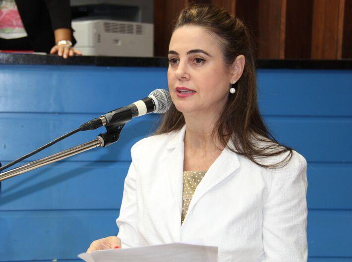 A deputada garante que apenas o PMDB procurou seu partido e que uma aliança pode ser formada (Foto: Arquivo)