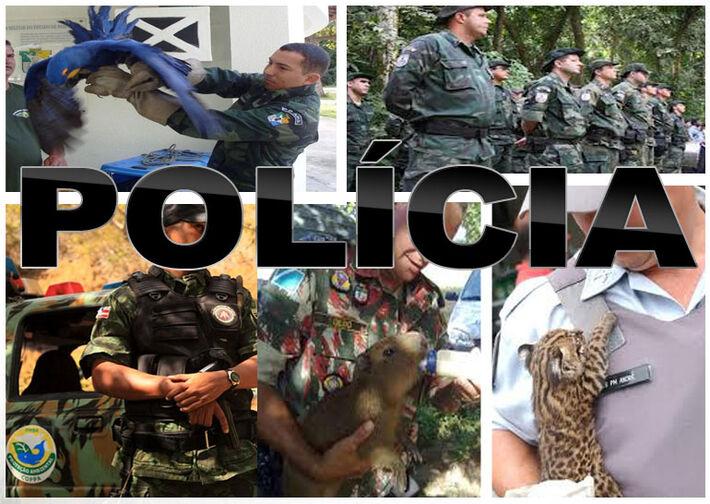 A ordem do Comando da PMA continua sendo a de encaminhar os autuados às delegacias para serem presos em flagrante.