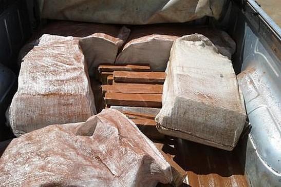 A droga estava na caminhonete Montana, cor prata, conduzida por Leandro Laudelino Pereira, 49 anos que foi preso e autuado em flagrante por tráfico de drogas.
