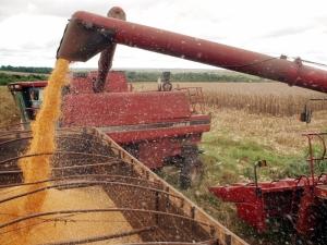 O Brasil deverá registrar produção de grãos de 196,7 milhões de toneladas na safra 2013/2014. A previsão foi anunciada hoje (9) pelo ministro da Agricultura, Antônio Andrade. O volume representa aumento de 5,2% em relação à safra passada, com registro