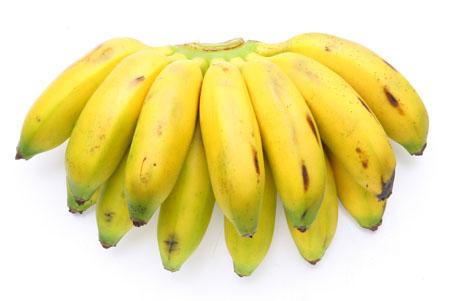 Crua, empanada e frita, como purê ou tartar – são inúmeras as receitas que levam banana como ingrediente e mais um tanto de pratos guarnecidos com ela. Cada variedade se presta melhor a determinados preparos. E o ponto de maturação também conta. Banan