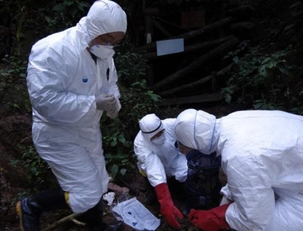 Pesquisadores chineses buscam vírus em caverna em Mojiang na China<br />Foto: Agência UOL