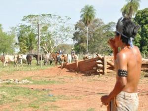 A maior parte dos óbitos de índios (5) ocorreu em Roraima, com Yanomamis. Em seguida, vem a Bahia (4), onde uma disputa antiga entre fazendeiros e Tupinambás no sul do estado obrigou o governo federal a enviar a Força Nacional para conter a violência.
