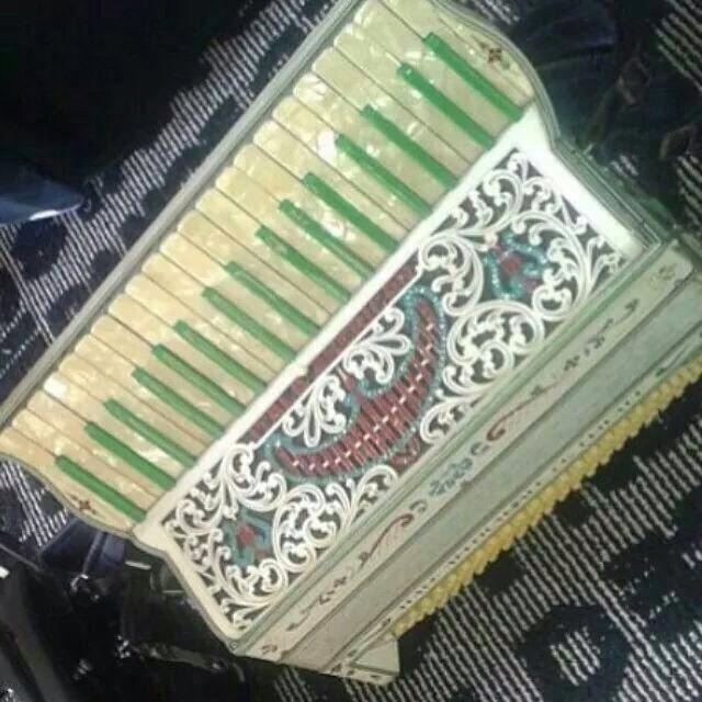 O músico conta com a ajuda da população para encontrar a sanfona que foi roubada de dentro de um carro - Foto: Divulgação