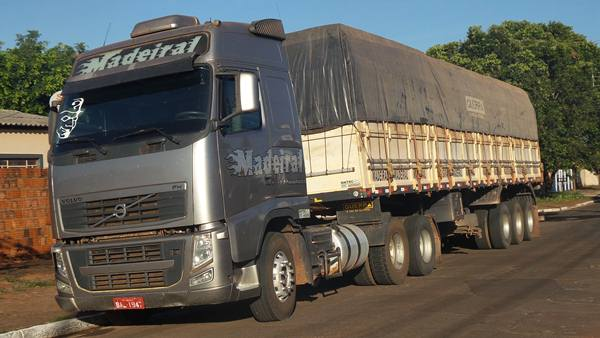 Caminhão apreendido com carga ilegal de madeira<br />Foto: Tayná Biazus