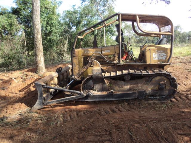 Máquina de esteira utilizada na derrubada das árvores<br />Foto: Assessoria