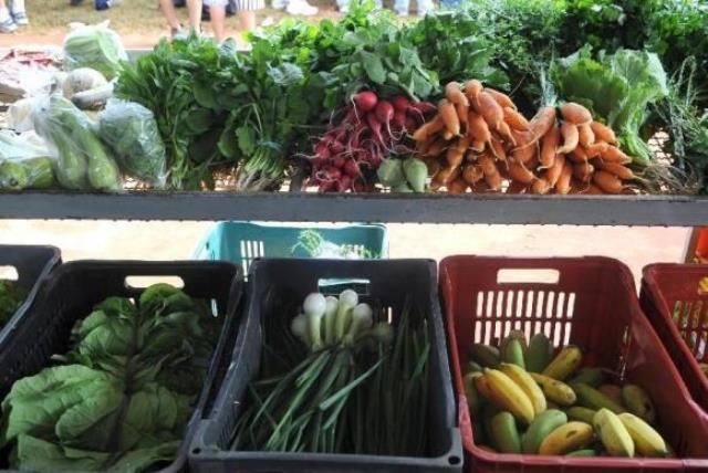 Frutas e legumes além de ser saudável deixam as pessoas mais felizes, segundo estudo<br />Foto: Reprodução