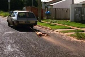 Populares flagraram o condutor arrastando o animal e acionaram a polícia<br />Foto: Divulgação/TanaMídia Naviraí