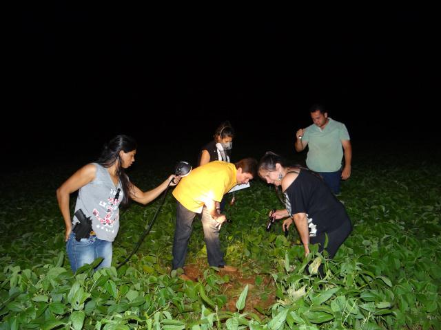 Corpo estava no meio de plantação de soja em área rural de Itaporã (Foto: Osvaldo Duarte)