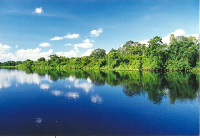 "</p> <p style=""text-align: justify;"">Heloísa Lazarini com Embrapa Pantanal</p>"
