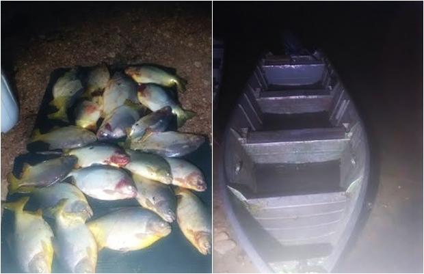 Pescado apreendido/Foto Divulgação PMA
