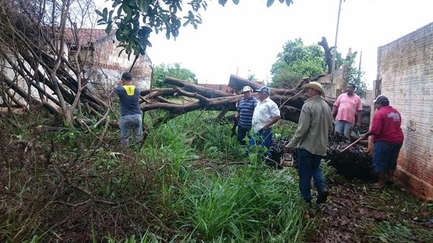 vereador Chiquinho Telles com voluntários/Fotos Nedina Santos Pereira