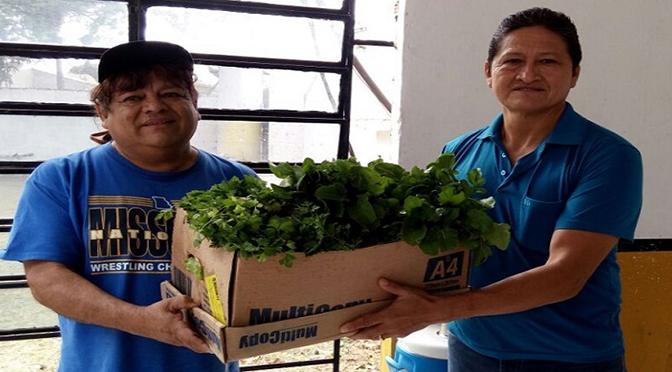 Duas entidades foram beneficiadas com a produção de hortaliças na unidade penal de Corumbá.