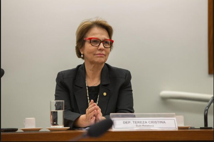 A nova presidente da Frente Parlamentar da Agropecuária, deputada Tereza Cristina