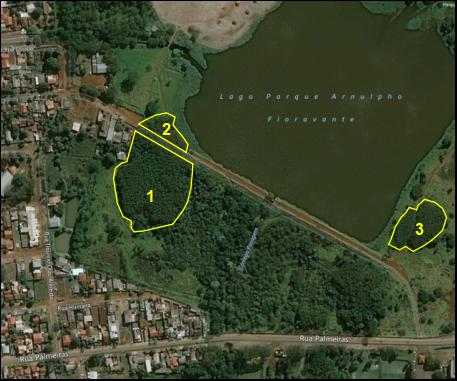 Locais indicados para a remoção das leucenas e enriquecimento com espécies nativas no Parque Arnulpho Fioravanti